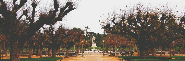 Golden Gate Park is a must see if you are visiting San Francisco for Marketing Nation Summit | FRG Technology Consulting